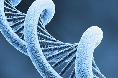 Diagnosi Genetica Preimpianto PGD